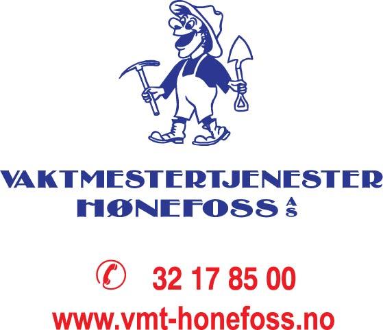 Yr No Hønefoss